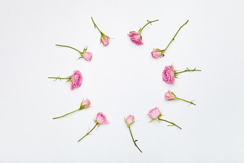 花瓣,美,贺卡,留白,水平画幅,情人节,生日,特写,俄罗斯,花束