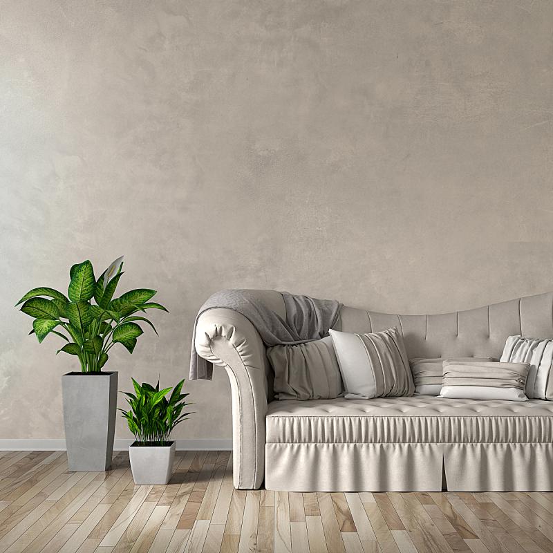 沙发,起居室,图像,盆栽植物,大厅,正面视角,留白,形状,墙,无人