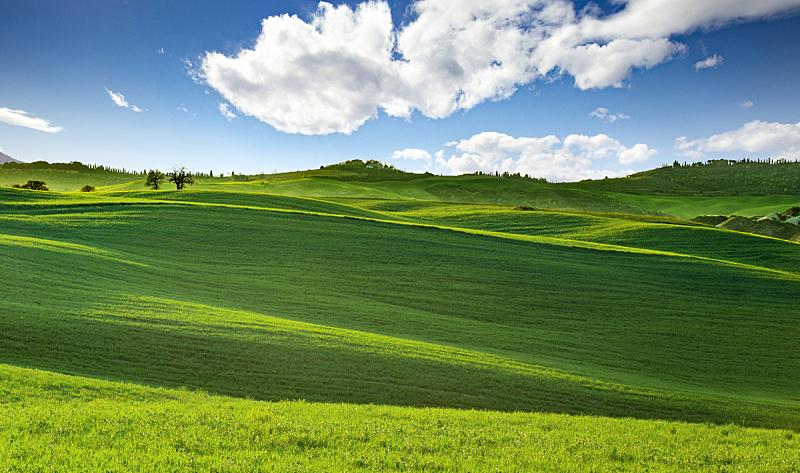 托斯卡纳区,全景,丘陵起伏地形,牧场,山,绿色,天空,水平画幅,无人,草坪