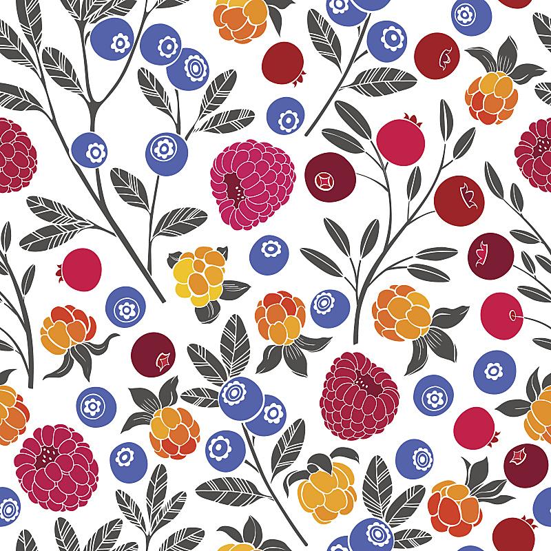 蓝莓,矢量,式样,浆果,蔓越桔,覆盆子,森林,云莓,白色背景,绘画插图