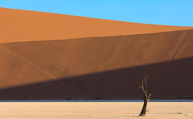 纳米比亚,毛洋槐,死亡谷,纳米布沙漠,苏丝斯黎,天空,水平画幅,无人,阴影,户外