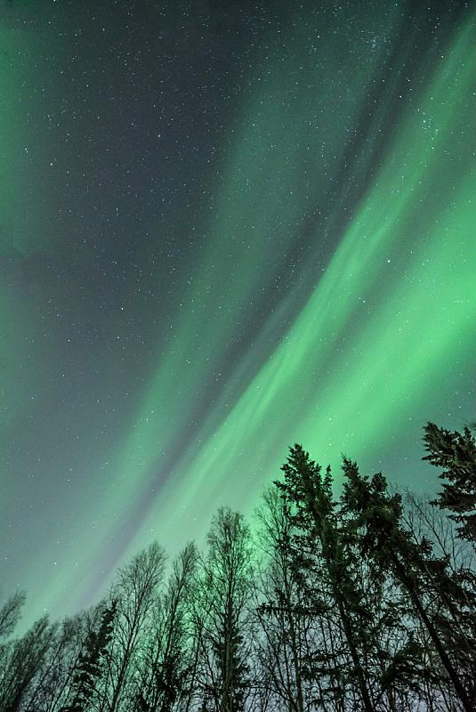 极光,绿色,道口标志,身体绘画,天空,接力赛,垂直画幅,美,留白,星星