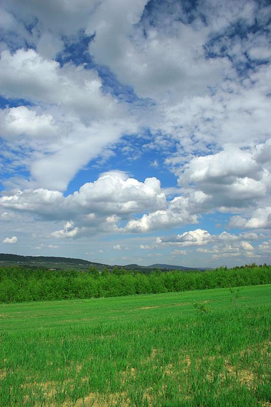 田地,绿色,地形,垂直画幅,天空,山,无人,夏天,户外,草