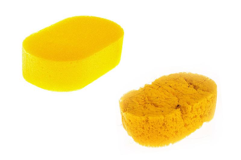 新的,黄色,白色背景,海绵,古老的,过时的,分离着色,湿,清新,背景分离