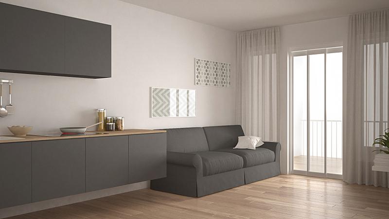 沙发,白色,极简构图,镶花地板,斯堪的纳维亚人,木制,厨房,室内设计师,灰色,开放式设计