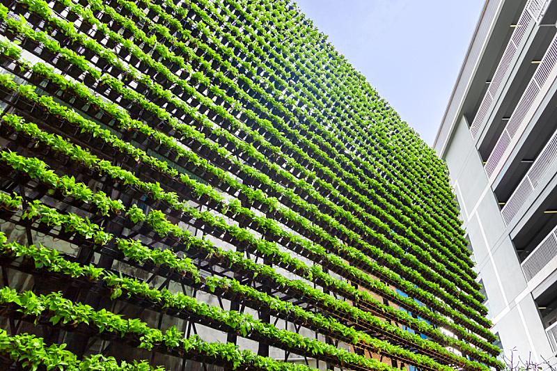 Vertical Garden – Green Wall –  BioWall