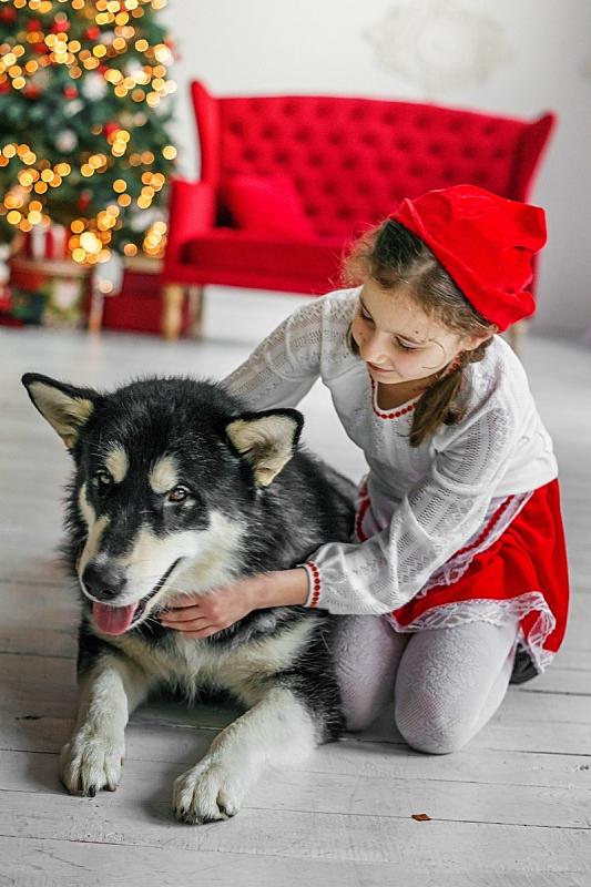 狗,儿童,古服装,巨大的,小红帽,垂直画幅,艺术家,新的,居住区,口络