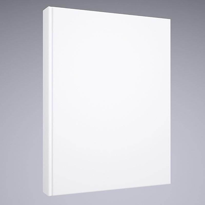 白色,书,空白的,留白,无人,小册子,背景分离,书页,方形画幅,文档