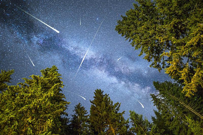 松树,银河系,流星雨,天空,星系,水平画幅,星星,天体物理学,夜晚,无人