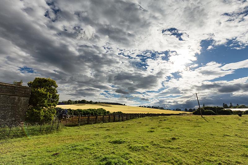 田地,克里夫,天空,美,水平画幅,云,旅行者,苏格兰,夏天,户外