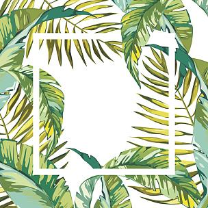 夏天,叶子,矢量,背景,数字10,热带雨林,花纹,鸡尾酒