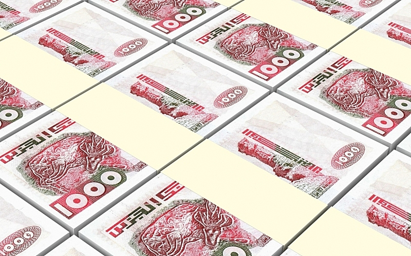 帐单,阿尔及利亚,水平画幅,形状,无人,绘画插图,金融,非洲,银行业,金融和经济
