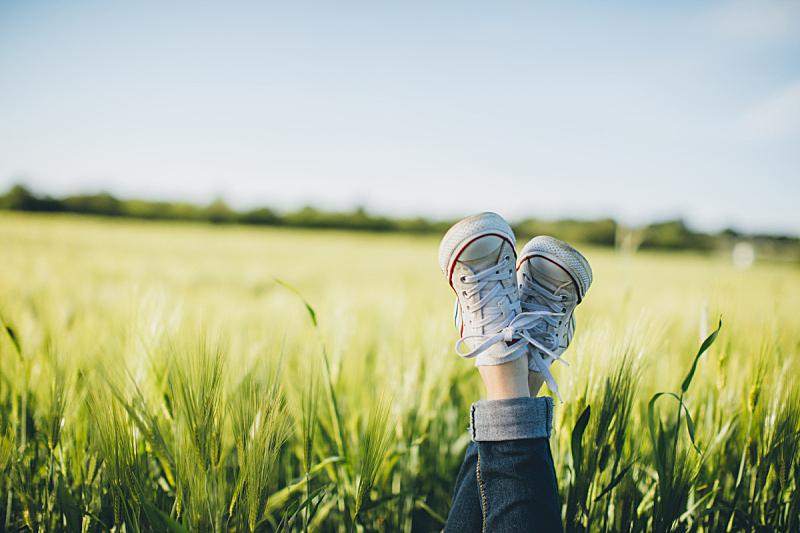 田地,小麦,运动鞋,环境保护,腿,草地,宁静,鞋子,草,四肢