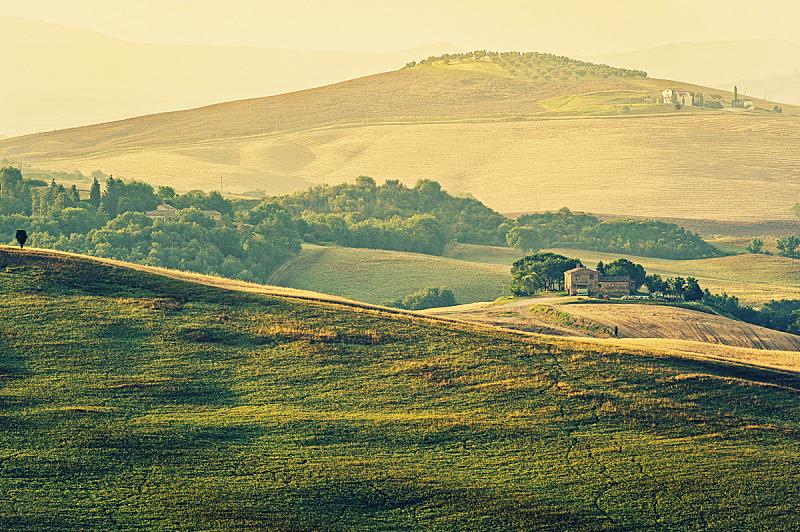 托斯卡纳区,意大利,干草卷,干草,水平画幅,山,夏天,户外,草,柏树
