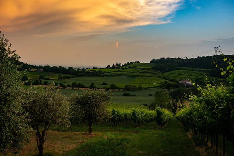 意大利,农业,自然,风景,图像,日光,草,自然美,宁静,无人