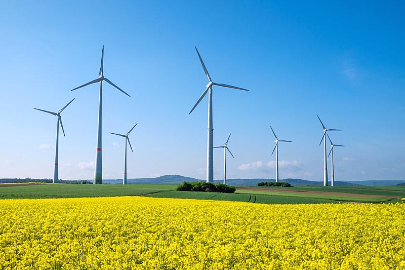 油菜花,风力,转动的风车,风轮机,说唱音乐,自然,天空,风,水平画幅,无人