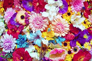 背景,多色的,热,植物,夏天,户外,园艺,人造的,自然,黄色