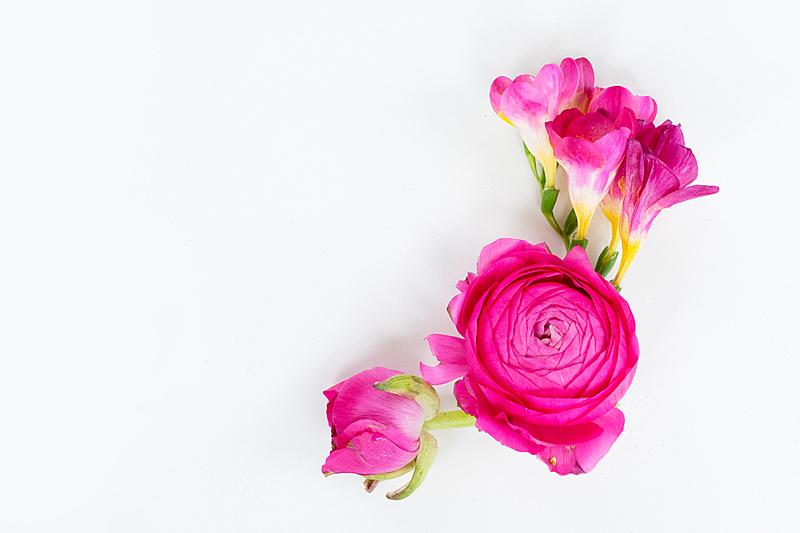 平铺,纸牌,玫瑰,周年纪念,毛莨属植物,背景分离,边框,浪漫,情人节卡,复古风格
