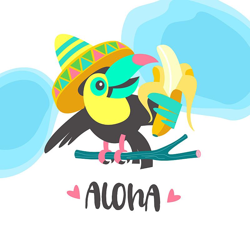 可爱的,巨嘴鸟,夏天,绘画插图,卡通,乐趣,矢量,你好,鸡尾酒