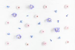 紫色,式样,粉色,平铺,毛蕊花属,花瓣,风信子,春天,白色,花纹