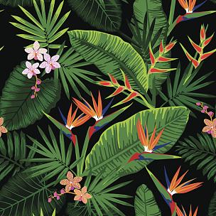 热带雨林,兰花,纺织品,无人,绘画插图,夏天,四方连续纹样,计算机制图,计算机图形学,棕榈树