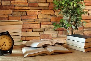 书,书房,哲学家,办公室,水平画幅,墙,努力,古典式,科学,时间