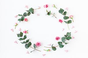 桉树,边框,玫瑰,枝,母亲节,花纹,贺卡,留白,水平画幅,古典式