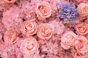 墙,花束,紫色,婚礼,可爱的,专心,玫瑰,周年纪念,清新,热情