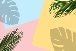 背景,明亮,热带气候,鸡尾酒,棕榈树,多色的,超现实主义的,灵感,植物,夏天