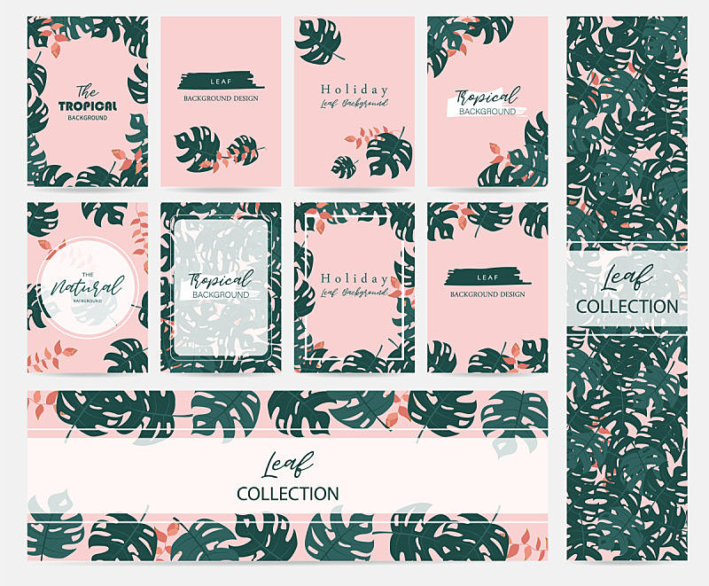 贺卡,棕榈树,海里康属,粉色背景,鸡尾酒,绿色,边框,水平画幅,无人,绘画插图