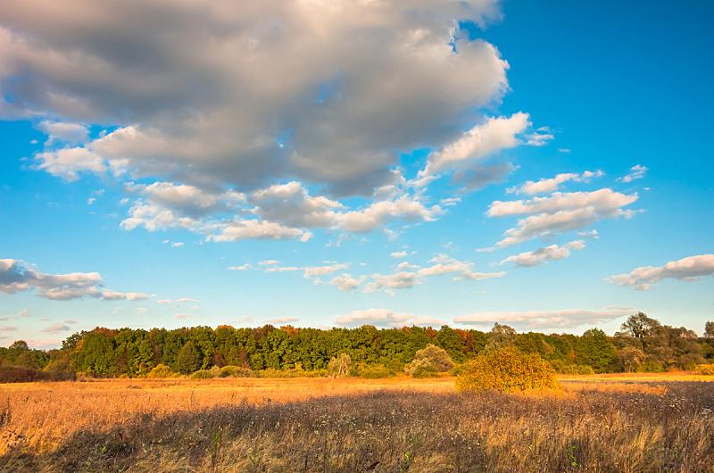 秋天,森林,天空,海洋,自然,水平画幅,无人,蓝色,户外,红色