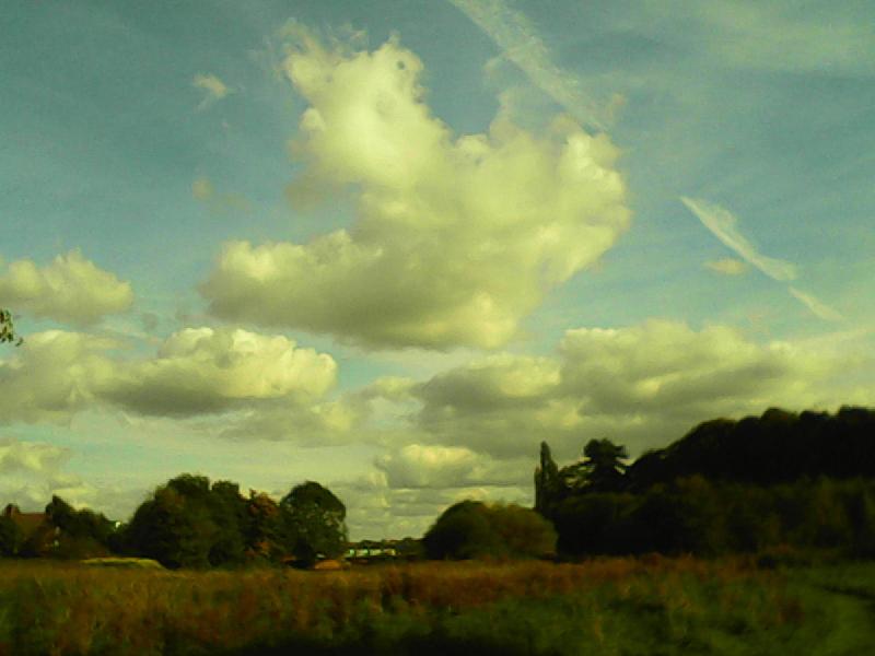 问号,人,垃圾,天空,公园,水平画幅,云,无人,夏天,户外