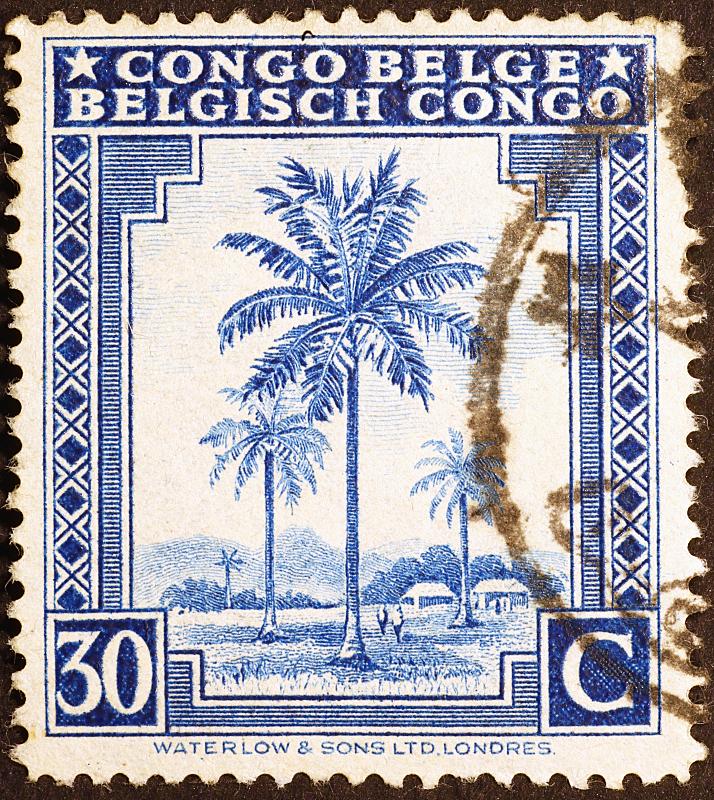 邮票,棕榈树,扎伊尔,垂直画幅,无人,非洲,摄影