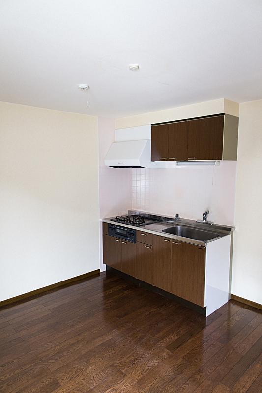 日本,厨房,亚洲,垂直画幅,住宅房间,无人,房屋,公寓,居住区,门