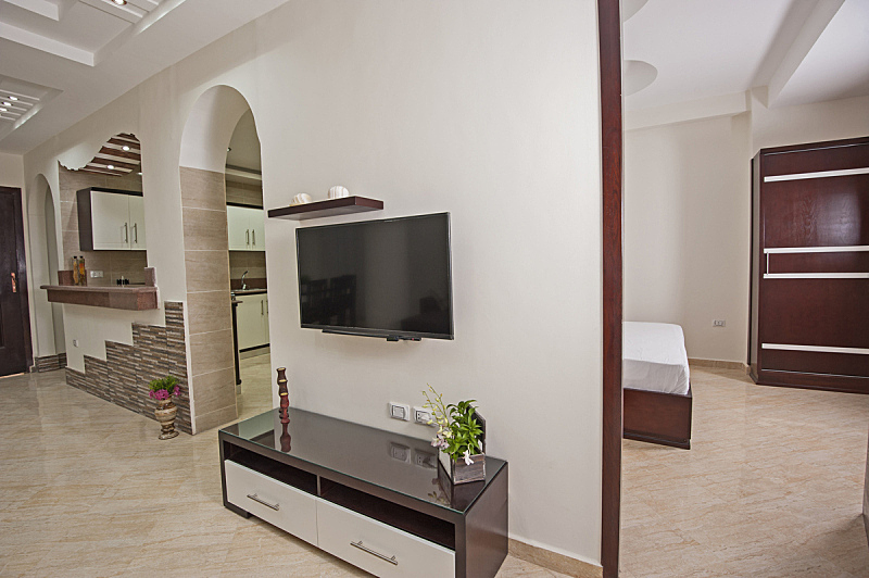 公寓,华贵,起居室,室内设计师,独立灶台,开放式设计,拱门,抽屉,样板间,衣柜