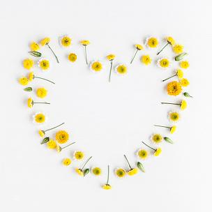 心型,黄色,符号,平铺,多样,雏菊,甘菊,国际妇女节,花环,母亲节