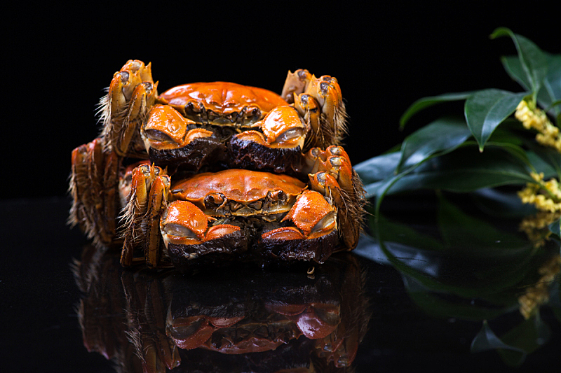 螃蟹,中国,大闸蟹,连指手套,水平画幅,篮子,湖,白色,多毛的,晚餐