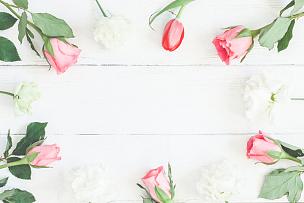 郁金香,仅一朵花,边框,玫瑰,平铺,视角,留白,高视角,夏天,想法