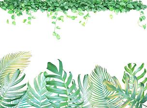 喜林芋属,常春藤,边框,干酪藤,悬挂的,黄色,鸡尾酒,绿色,彩色图片,背景