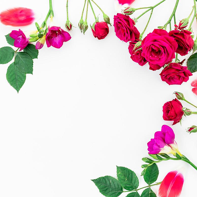边框,白色背景,枝,平铺,风景,背景,绿色,花,上装,做