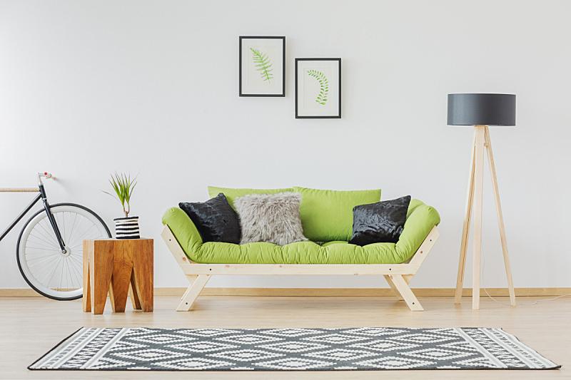 沙发,绿色,黑色,太空,式样,桌子,水平画幅,小毯子,装饰物,家具