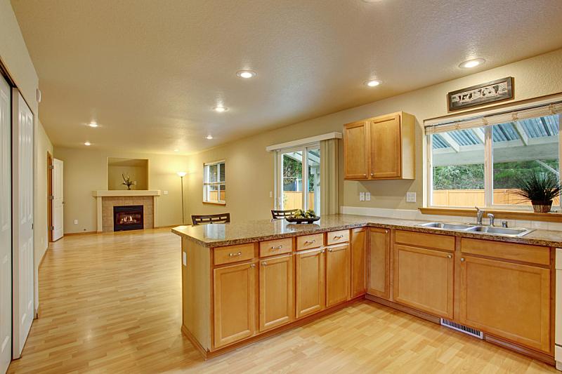 厨房,简单,硬木地板,窗户,住宅房间,水平画幅,吧椅,建筑,无人,豪宅