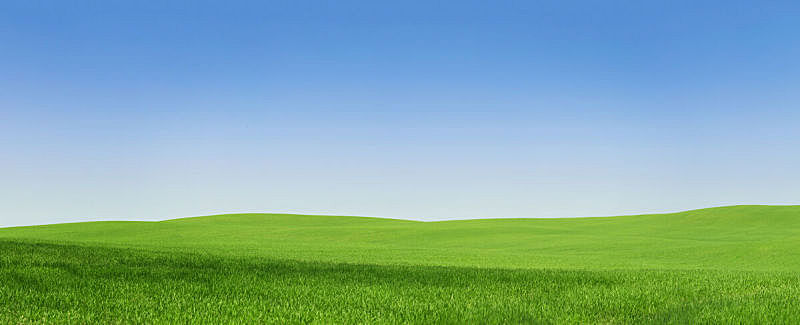 绿色,田地,空的,100岁以上,天空,留白,风,草坪,夏天,草
