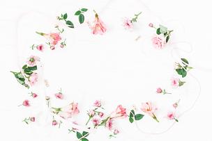 仅一朵花,粉色,边框,叶子,平铺,留白,高视角,古典式,夏天,生日