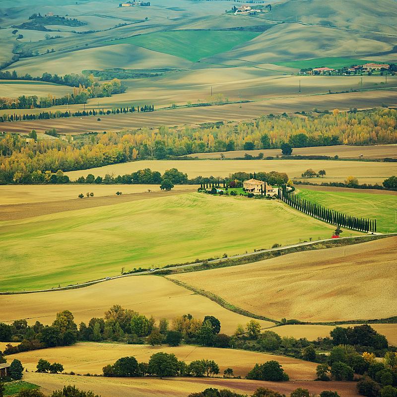田地,托斯卡纳区,太空,草地,非都市风光,地形,山,无人,欧洲,古典式