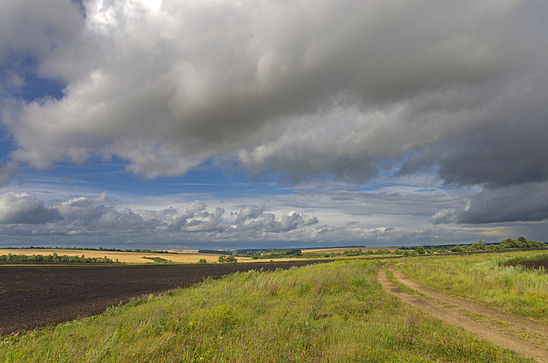 夏天,地形,自然,暗色,七月,云,图像,草,无人