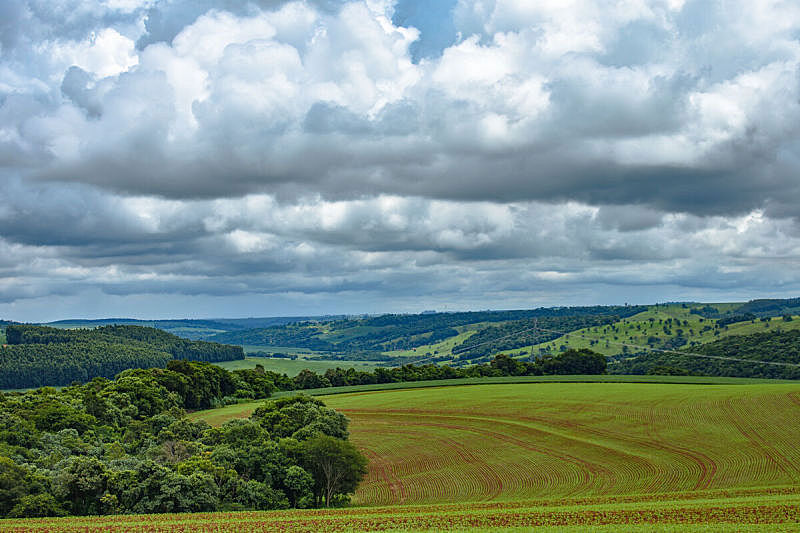 Countryside Landscapes in the Brazilian State of Paraná, Near the Cities of Cascavel and Toledo