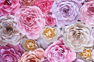玫瑰,纸,背景,多色的,桃树,手工纸,褐色,粉色,紫色,花