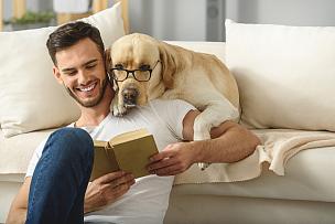 书,宠物,男人,互联网,智慧,男性美,拿着,单身,小狗,沙发