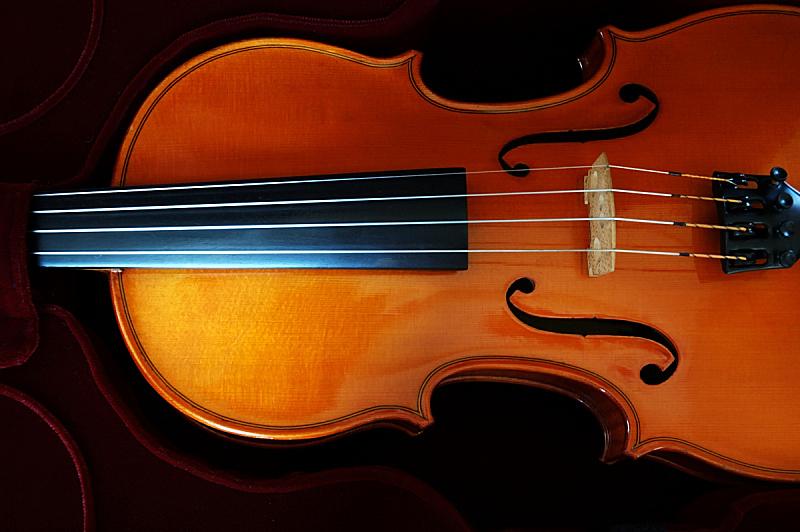 小提琴,大提琴盒,小提琴盒,吉他盒,奶油糖,法郎符号,英文字母f,琴码,大提琴,指板